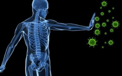How Sleep Affects Your Immunity